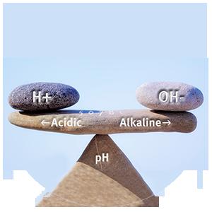 Alka balance