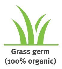 grass germs